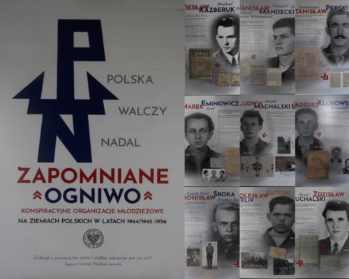 Zapomniane ogniwo. Konspiracyjne organizacje młodzieżowe na ziemiach polskich w latach 1944/45 – 1956
